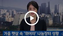 2015위아자나눔장터 JTBC 뉴스영상1