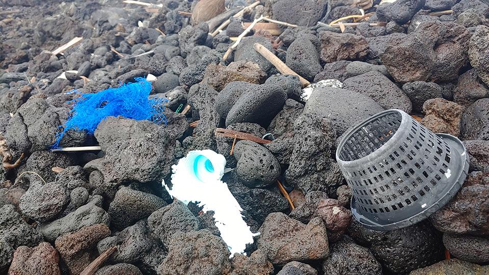 '미국 하와이 빅아일랜드 카울라나만' 기사 사진